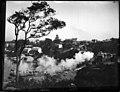 Lavender Bay with steam train (3310899018).jpg