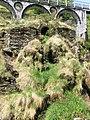 Laxey - panoramio (15).jpg