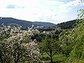 Le Tholy, Vallée de Cleurie.jpg
