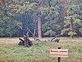 Lebensgefahr durch Astbruch im Favoritepark in Ludwigsburg - panoramio (1).jpg