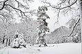 Lebenswertes chemnitz winter stadtpark schnee rundblick 2.jpg