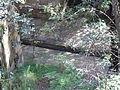 Lennox Bridge channel.JPG