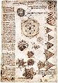 Leonardo da Vinci – Codex Atlanticus folio 459r.jpg