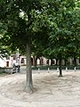 Leonhardskirche Basel mit Labyrinth.JPG