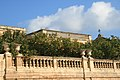 Limoni a Piazza Duomo - Siracusa (Sicilia).jpg