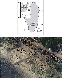 Ohalo II Early Epipalaeolithic archaeological site in Israel