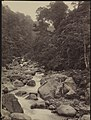 Loeboek Prahoe aan Sumatra's westkust.jpg