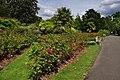 London - Sutton - Oaks Park (geograph 4069209).jpg