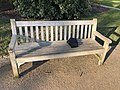 Long shot of the bench (OpenBenches 4265-1).jpg