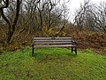 Long shot of the bench (OpenBenches 5103-1).jpg