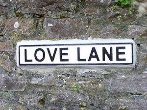 Lovers' lane - Road sign for Love Lane in Marldon, Devon, United Kingdom.