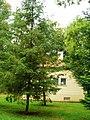 Lubostroń, budynek gospodarczy (dec. domek myśliwski), kon. XIXc.JPG