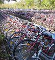 Ludwigshafen BASF Fahrradparkplatz.jpg