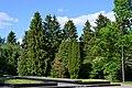 Lutsk Volynska-Memorial natural monument-view-5.jpg