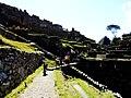 Machu Picchu (Peru) (14907199348).jpg