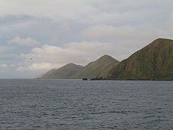 MacquarieIsland3.JPG