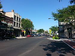 Madison Street, Downtown Forest Park