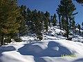 Malamjaba swat - panoramio.jpg