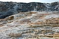 Mammoth Hot Springs (3).jpg