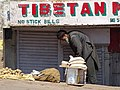 Man in Street with Tibetan Signage - McLeod Ganj - Himachal Pradesh - India (26718708072).jpg