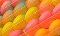 Marzipan eggs.jpg