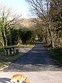 Mawddach Trail at Morfa Mawddach station - geograph.org.uk - 394046.jpg