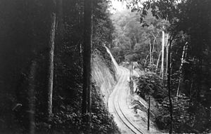 Mayombe - The Mayumbe railway, August 1930