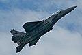 McDonnell Douglas F-15 Strike Eagle (6900916247).jpg