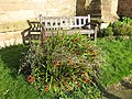 Memorial bench, Linton churchyard - geograph.org.uk - 1585068.jpg