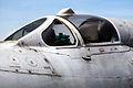 MiG-21 img 2523.jpg