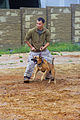 Military working dogs, handlers build relationship 131024-M-GE767-005.jpg