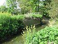 Mill Stream, Baltonsborough (geograph 2509443).jpg