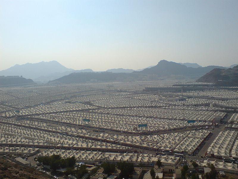 طيارة تجارة وورلد الماجيكو..رحلة السعودية