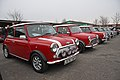 Minis (real ones...) - Flickr - exfordy (1).jpg