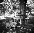 Miza s klopmi, zabito v zemljo, spredaj voziček, oreh, v Rogatcu 1948.jpg
