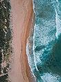 Mona Vale Beach (Unsplash).jpg