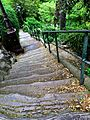 Montmartre steps, Paris May 2014.jpg