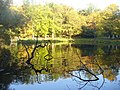 Moorlake - Herbst (Autumn at Moorlake) - geo.hlipp.de - 29842.jpg