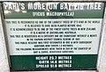 Moreton Bay fig sign at Pahi.jpg