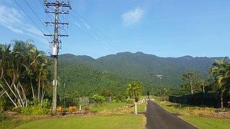 Bellenden Ker, Queensland - Looking from Telecom Road in the locality of Bellenden Ker toward the mountain summit, 2018
