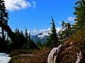 Mt. Baker-Snoqualmie National Forest (9290054793).jpg