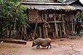 Muang Sing, Laos13.jpg