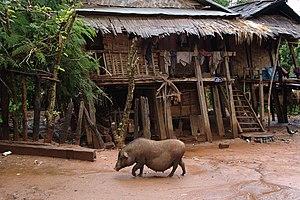 Muang Sing - Image: Muang Sing, Laos 13
