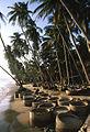 Mui Ne Strand mit Fischerkörbe 01.jpg
