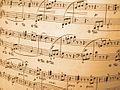 Music symbols as background.jpg