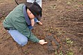 NRCS Texas Soil Scientist Nathan Haile examines active soil micro-organisms at work where a wildfire occurred three weeks earlier. (24815771610).jpg