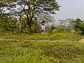 Nabinchandra Sen grave (7).jpg
