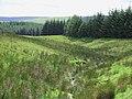 Nant Ganol, by Llether, Ceredigion - geograph.org.uk - 516113.jpg