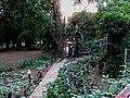 Nascer do Sol no Chalé Hotel em Bauru. - panoramio.jpg