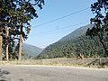 Natural view in mountains122.jpg